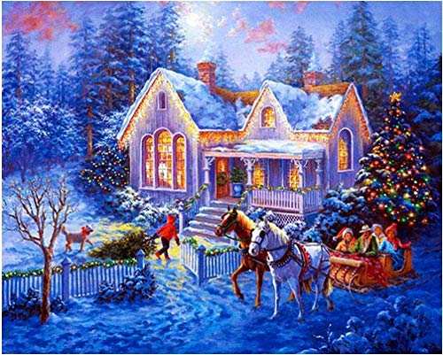 DIY 5D diamant schilderij Winterlandschap Kristal strass borduurwerk schilderij diamant decoratie, gebruikt voor thuis wanddecoratie