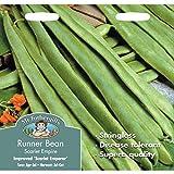 Mr Fothergill's 10649 Vegetable Seeds, Runner Bean Scarlet Empire (Stringless)