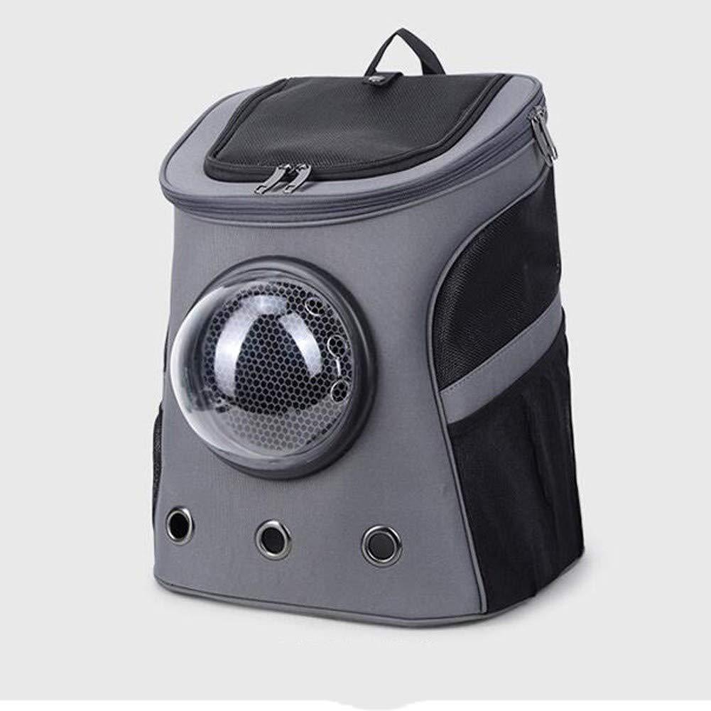 CR-Bolsa de Confort Fat Cat Cat Backpack - Mochila for Gatos for Gatos: Amazon.es: Productos para mascotas