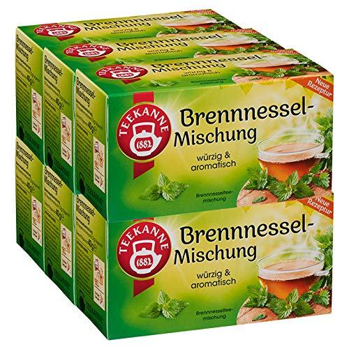 Teekanne Brennnessel-Mischung, 6er Pack