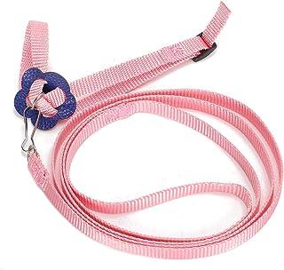 Adjustable Lizard Leash Rope, Lizard Harness, for Reptile