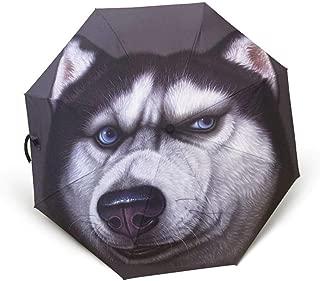 AUWANGAOFEI Fully Automatic UV Protection Sunscreen Folding Rain and Rain Dual Purpose Umbrella (Color : Black)