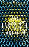 Das Labyrinth jagt dich (Labyrinth-Trilogie 2)