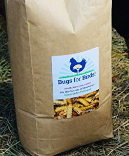 NORTH AMERICAN-RAISED Bugs for Birds! Better Than Mealworms - Dried BSF Larvae - Natural Chicken Feed Supplement / Wild Bird Treats - for Healthy Eggs and Feathers!