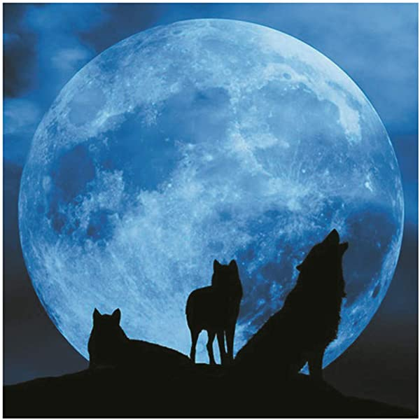 Jiulonerst Luminous Wolf 3D Wall Sticker Glow In The Dark Home Decor Kids Living Room Bedroom Decal Perfect Gift Kids Boys Girls Adults 3030CM