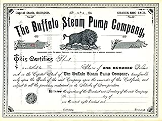 1880 VERY RARE ORIGINAL 1880 BUFFALO STEAM PUMP STOCK CERTIFCATE w CHARGING BUFFALO (NY) MADE PUMPS FOR U.S. WW1 BATTLESHIPS! $100/Share Crisp Uncirculated