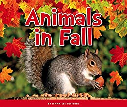 Animals in Fall (Welcome, Fall!)