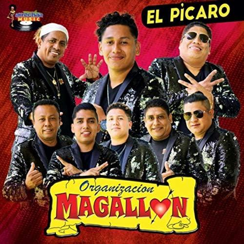 Organización Magallón
