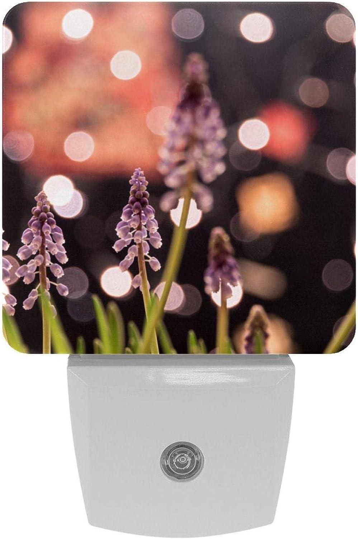 LED Night Light Finally resale start Lavender Beautiful Photo with Smart Lamp Print New item S