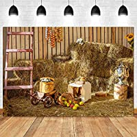 感謝祭のハロウィーン光干し草の山の装飾背景 写真の結婚式の誕生日スタジオ写真の背景のパーティー用品背景 写真撮影用背景布