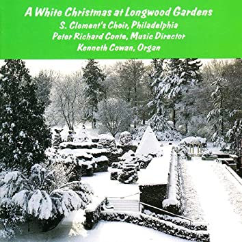 A White Christmas at Longwood Gardens