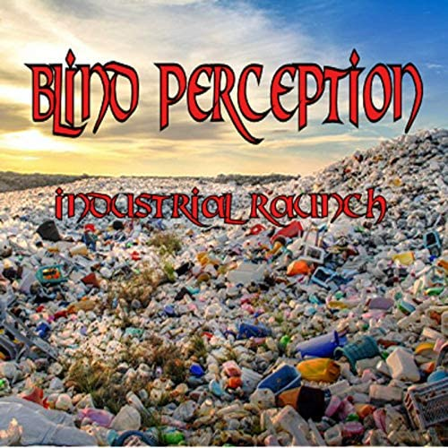 Blind Perception