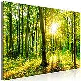 decomonkey | Mega XXXL Bilder Wald Baum | Wandbild Leinwand 170x85 cm Selbstmontage DIY Einteiliger XXL Kunstdruck zum aufhängen | Natur Landschaft grün