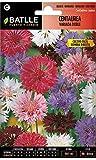 Semillas de Flores - Centaurea gigante doble variada extra - Batlle