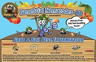 Bug Sales 50 Million Live Beneficial Nematodes Hb - Soil Pest Exterminator