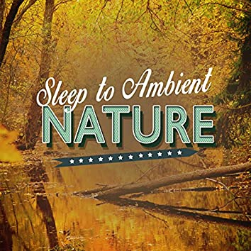 Sleep to Ambient Nature