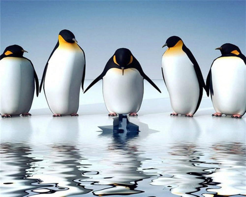 WALSITK 5d Diamantmalerei Pinguin, Diamantmalerei komplett, Huacan Diamantmalerei-50x60cm B07MYCH1VR | Up-to-date-styling