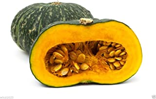 Puerto Rican Pumpkin/Calabaza ( 25 Seeds) - Open pollinated, heirloom