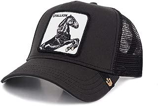 goorin stallion