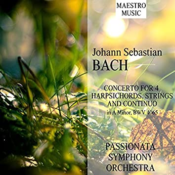 J. S. Bach: Concerto For 4 Harpsichords, Strings And Continuo In A Minor, BWV 1065