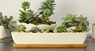 rectangle plant containers