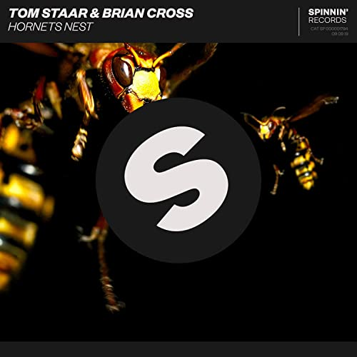 Hornets Nest de Tom Staar & Brian Cross en Amazon Music - Amazon.es