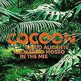 Cocoon Ibiza (2 CDs)