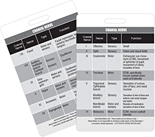 Cranial Nerve Chart Reference Vertical Badge Card - Excellent Resource for Nurses, Nursing Clinicals, and RN Students - Gr...