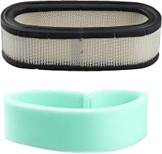 Podoy 394019 Air Filter for Briggs & Stratton Lawn Mower 272490S 394019S 398825 24150 4136 AM38990 24150