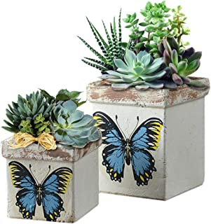 Forward Flower Pot Large Set of 2, Outdoor Succulent Plant Garden Pots Square Planter Vintage Pottery Orchid Pot with Butterfly Pattern, Plants Container Yard Decor (2 Piece, Natural Terracotta)