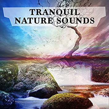 Tranquil Nature Sounds