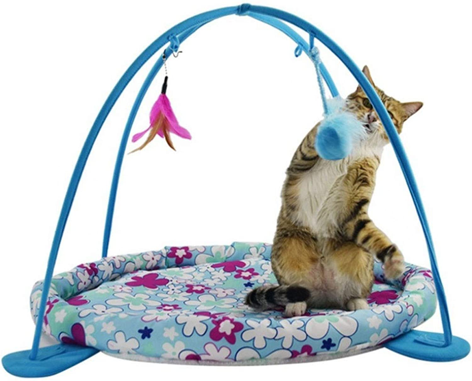 Pet Supplies Cat Bed Cat Hammock Toy Exercise Playful Bed Small Animal Beds (color   bluee, Size   OneSize)