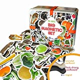 MAGDUM 85 Fotos Set Animales&Frutas&Verduras en Caja de Lata de Regalo-imanes de bebé Realistas-85 Grandes Juguetes de imán para 3 años-Juegos Educativo Aprender magnético para niños-Teatro Magnético