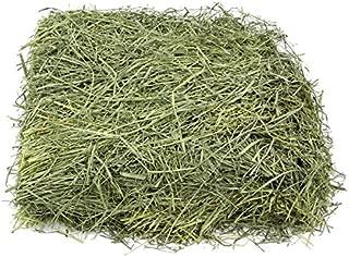 KMS Hayloft Premium Bluegrass Hay for Small Animals …