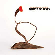 Best meg baird mary lattimore ghost forests Reviews