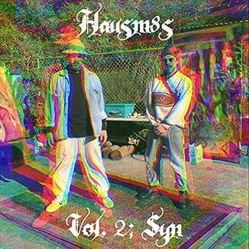 Hausm8s, Vol. 2: Syn