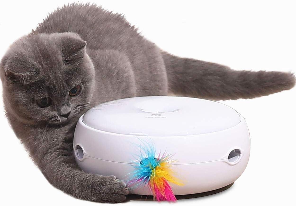 juguete interactivo para gatos con plumas