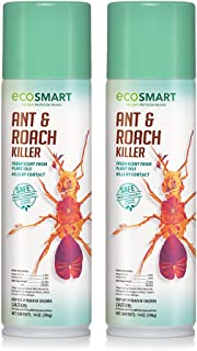EcoSmart Natural, Plant-Based Ant and Roach Killer with Peppermint and Rosemary Oil, 14 Ounce Aerosol Spray Can (Pack of 2)