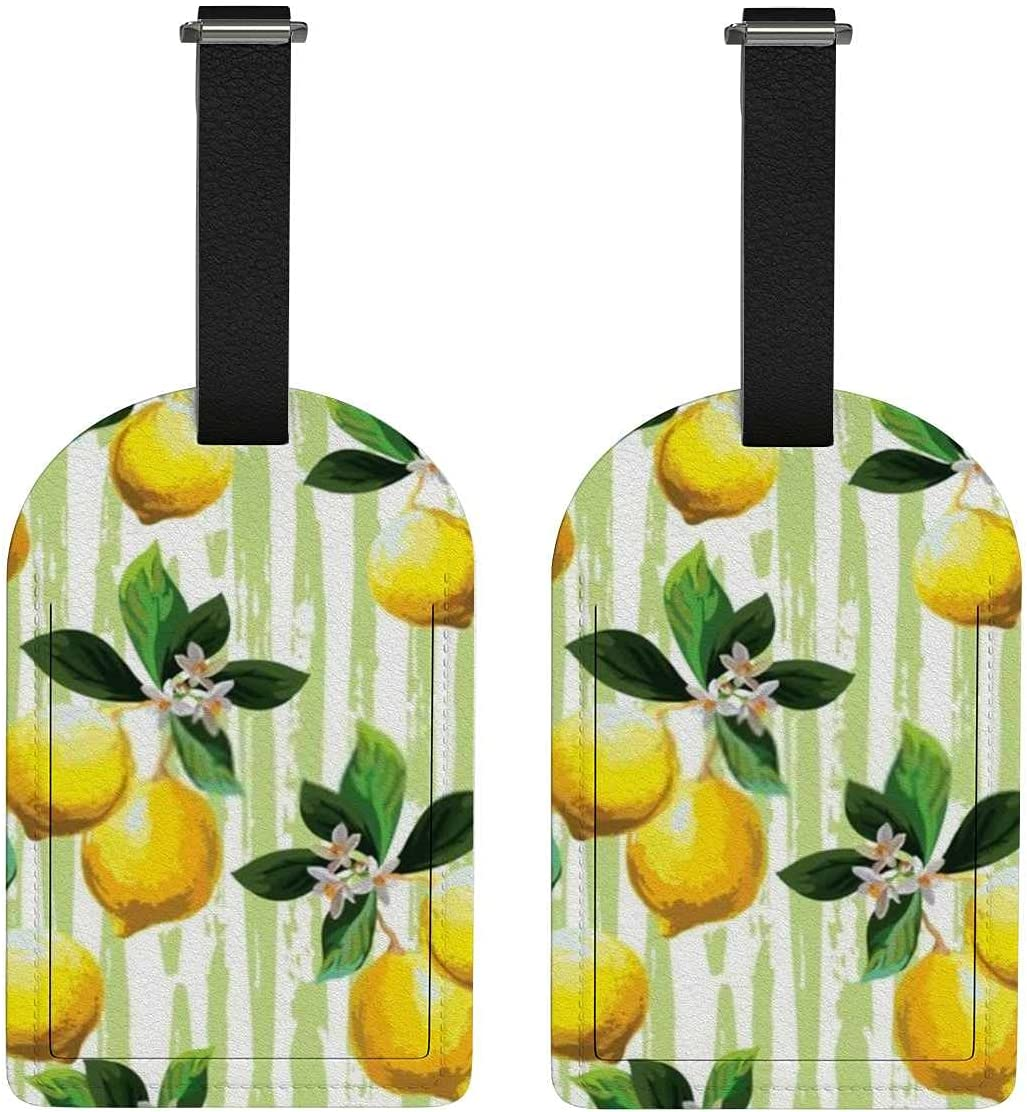 Set Al sold out. of 2 Luggage Tag with Full Citrus N Privacy Manufacturer direct delivery Leaves Back Palm