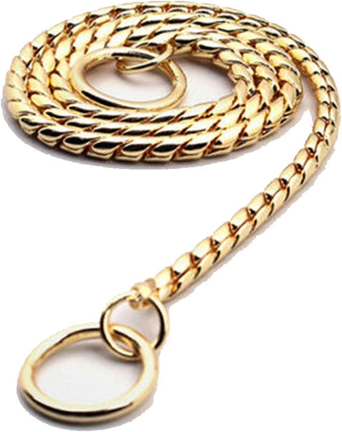 DQMSB Dog P Chain Collar Traction Rope, Snake Chain, P Rope, Dog Chain Stainless Steel, Large and Medium Small Dog Training Rope Leash (color   Local gold, Size   50cm)