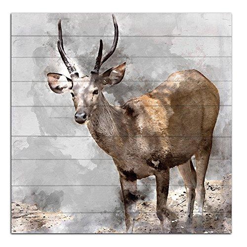 Cuadros Lifestyle Wandbild aus Holz | Holzbild | Shabby-Look | Landhaus | Hirsch | Kitz | Eingang | Vintage | Geschenk, Größe:ca. 50x50 cm