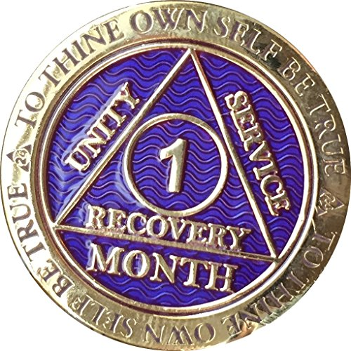 1 Month AA Medallion Reflex Purple Gold Plated 30 Day Chip