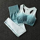 qqff Gimnasio Fitness Mujer Yoga Traje Entrenamiento,Pantalones Cintura Alta Traje Yoga suitling Dos Piezas,Sujetador Umbilical Ropa Deportiva-Azul,Mallas Deportivas Mujer Padel