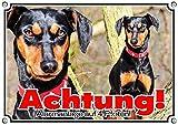 Hundeschild Deutscher Pinscher - wetterfestes Türschild aus Metall, 1. DIN A5