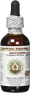 Cordyceps Alcohol-Free Liquid Extract, Cordyceps (Cordyceps Sinensis) Mushroom Glycerite Herbal Supplement 2 oz
