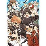 ALTcompluser Anime Haikyuu Poster Wanddekoration Wandbild