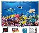 GREAT ART XXL Poster Aquarium Meerestiere | farbenfrohe Unterwasserwelt Meeresbewohner Ozean Fische Riff Delphin Schildkröte Korallenriff | Wandbild Fotoposter Wanddeko Fototapete | 140 x 100 cm - 3