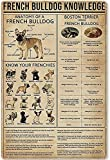 Metal Sign French Bulldog Knowledge Poster Tin Sign Bar Home Decoration New Year Sign The Best Gift for Parents, So That Children Can Gain Knowledge in Daily Life 12X18 inch