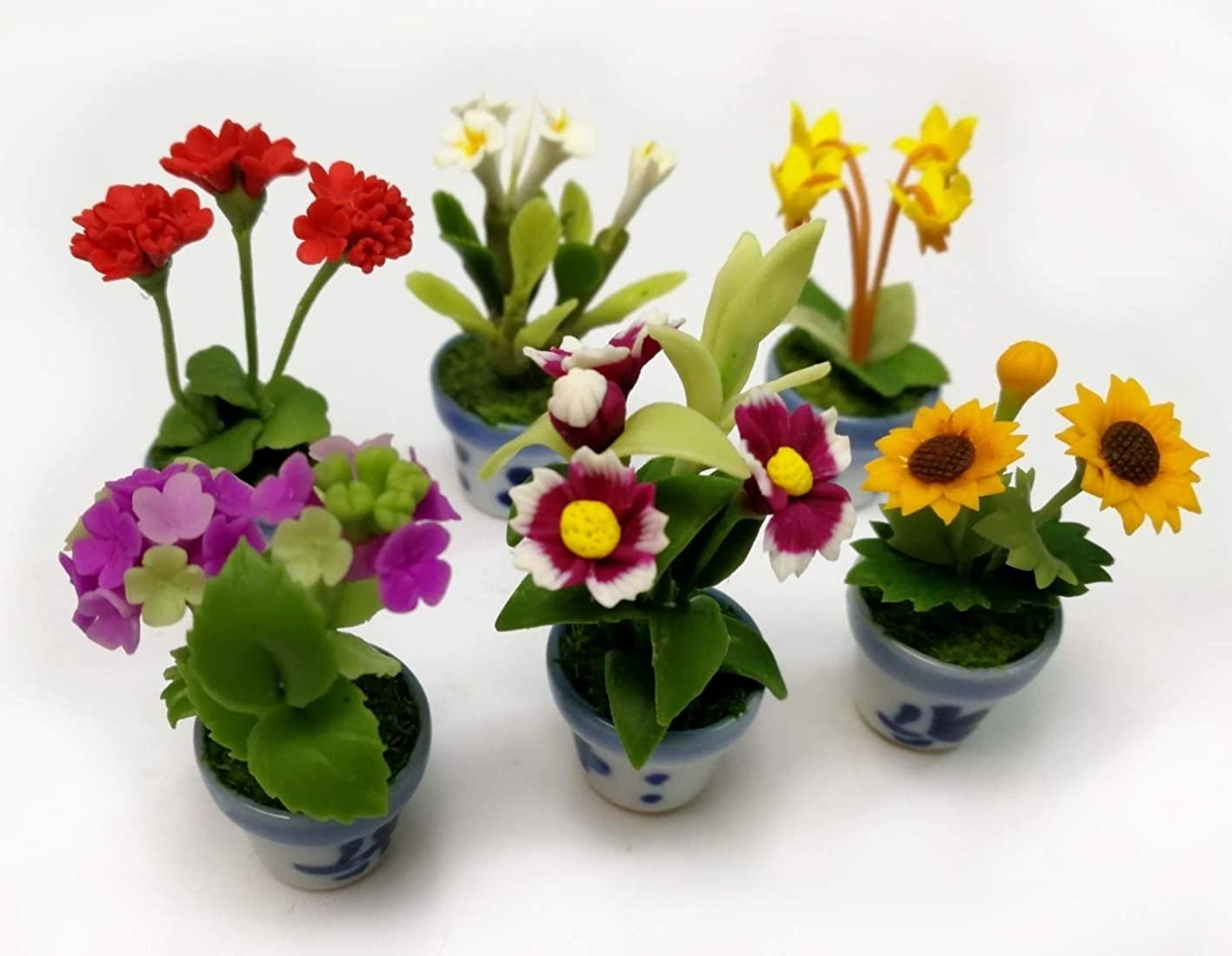 thebestbuy Set of 6 Dollhouse Miniature Variety 1:12 Scale Plant Flower Home Decor jsomfmphefx693