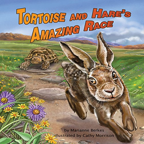 Tortoise and Hare's Amazing Race copertina